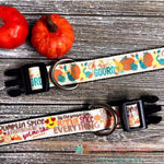 "1"" oh my gourd or pumpkin spice Dog Collar - Paws N Claws Couture"