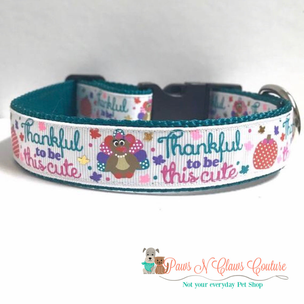 "1""  thankful to be this cute Dog Collar"