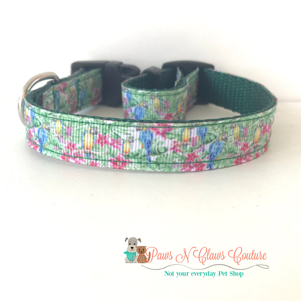 "5/8"" Parrots Dog Collar - Paws N Claws Couture"