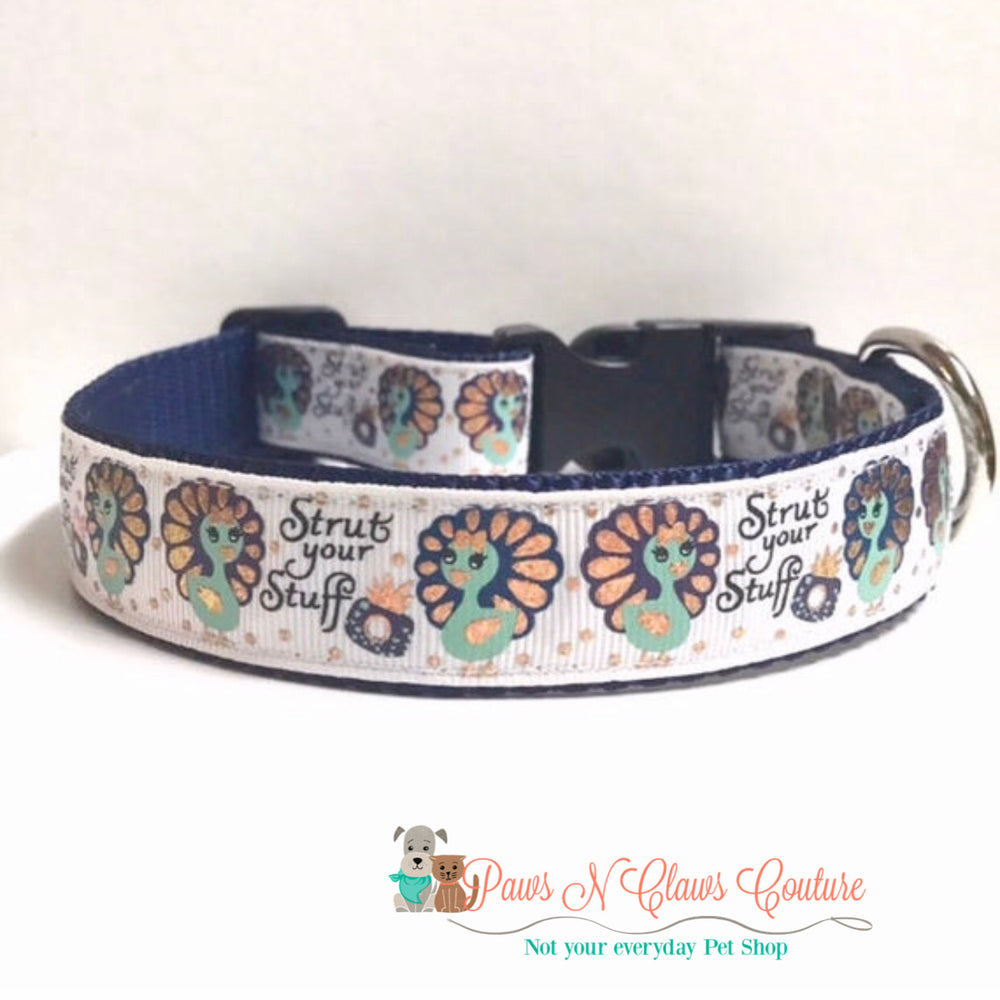 "1""  strut your stuff Dog Collar - Paws N Claws Couture"