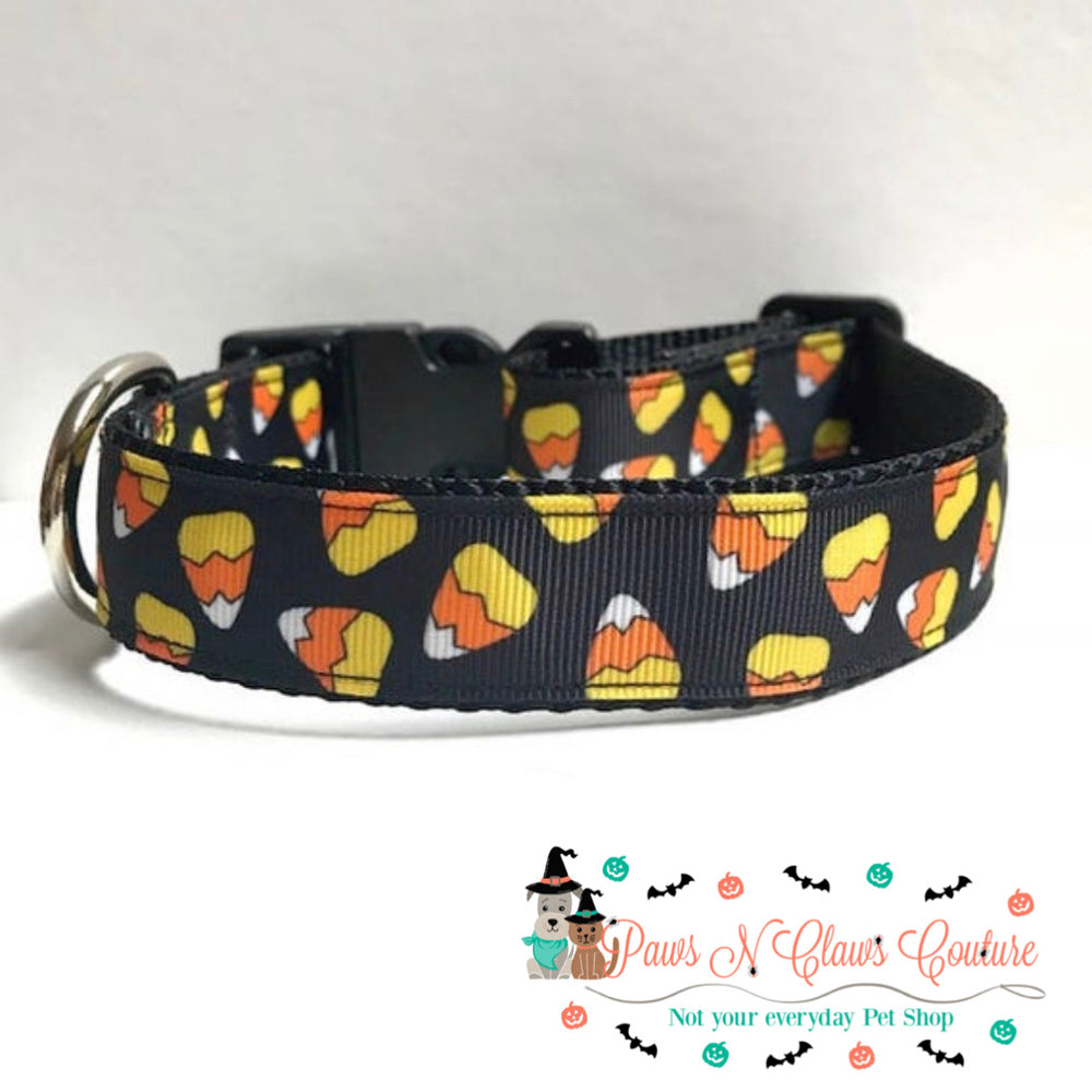 "1"" Candy corn Dog Collar, Leash Available - Paws N Claws Couture"