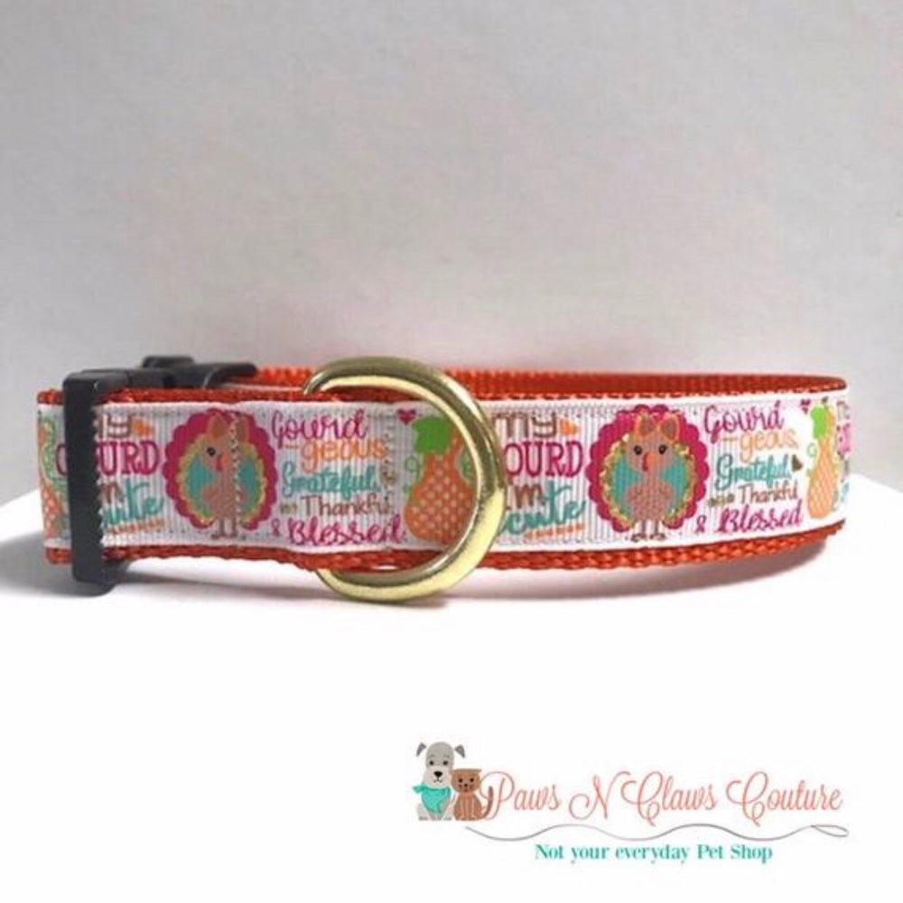 "1"" Pilgrim turkey or oh my gourd I'm cute Dog Collar"