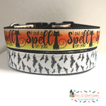 "1""  bats or spell Dog Collar"
