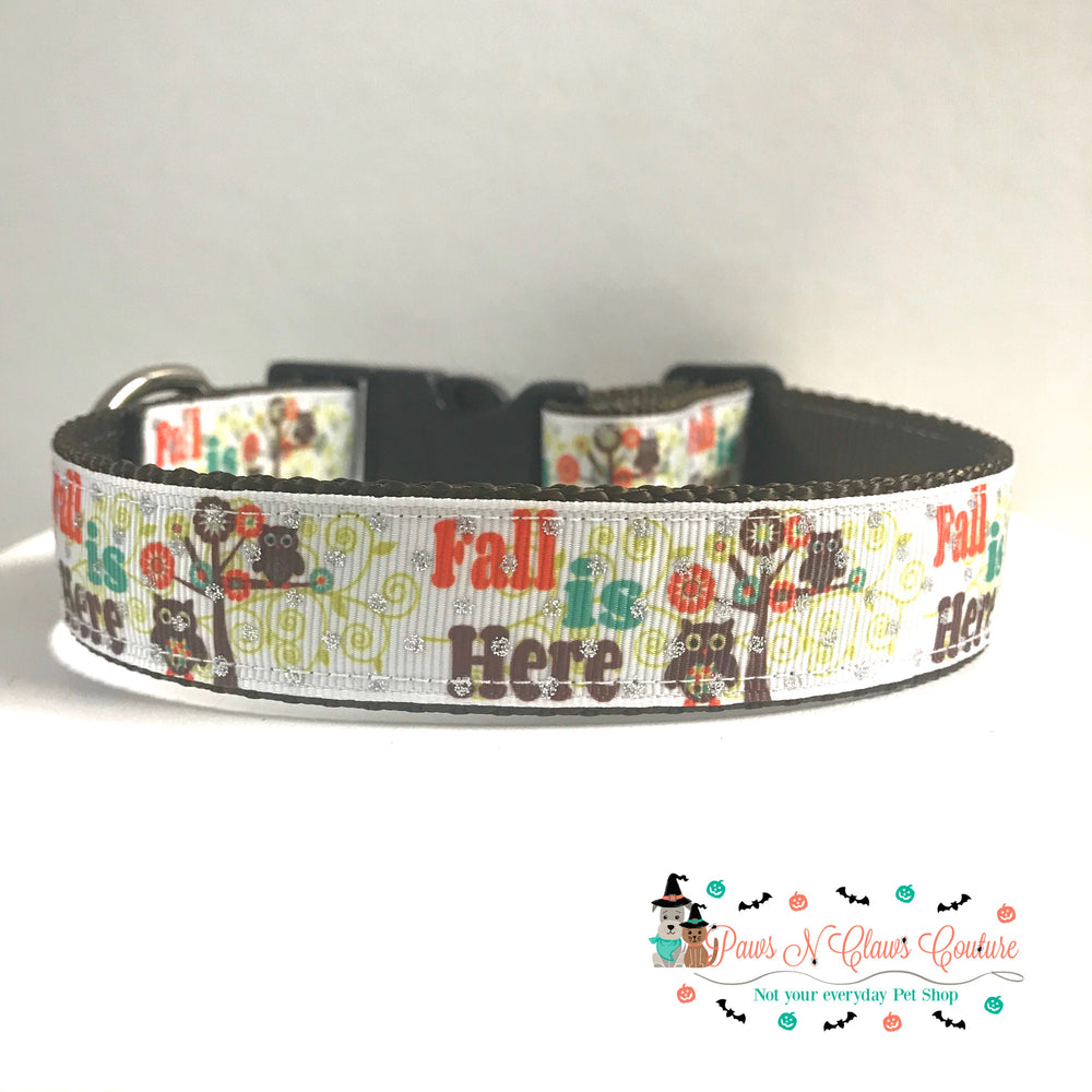 "1"" Fall is here or Pumpkins Dog Collar"