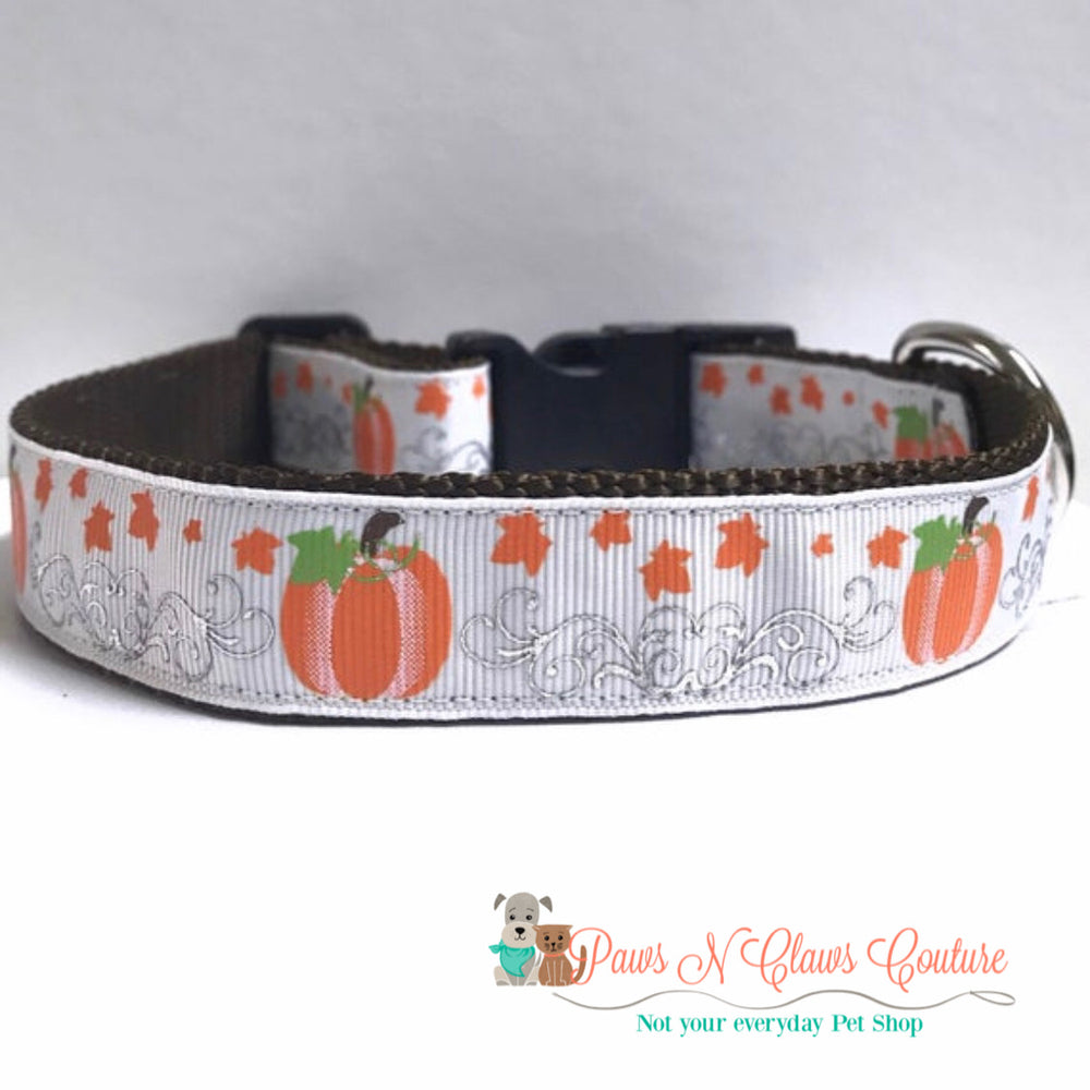 "1"" Fancy pumpkins Dog Collar - Paws N Claws Couture"