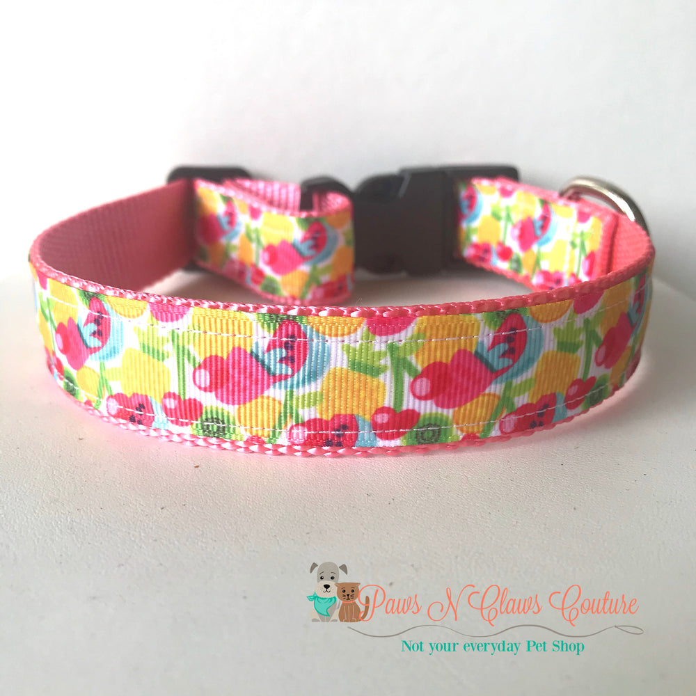 "1"" Tooty fruity Dog Collar - Paws N Claws Couture"