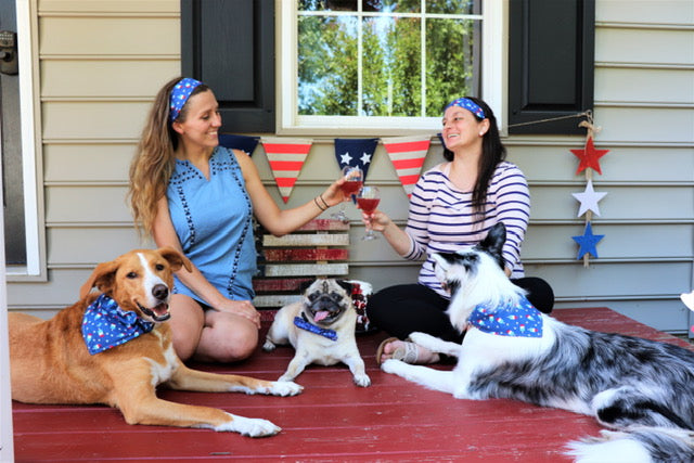 Patriotic Ice Cream Headband - Paws N Claws Couture