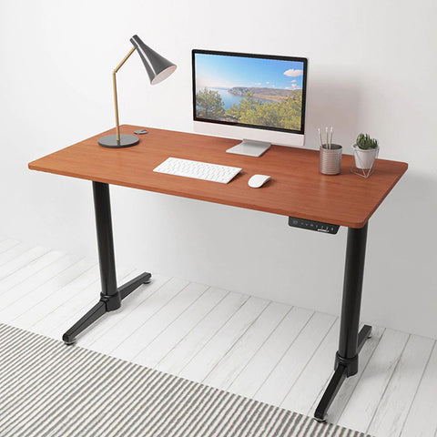 Eureka Height Adjustable Electric Standing Desk 3D View