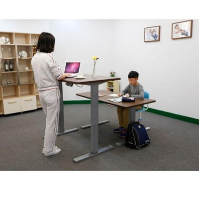Flexispot Electric Height Adjustable Desk 3D VIew Sitting And Standing