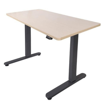 Flexispot Electric Height Adjustable Desk Gray Frame Maple