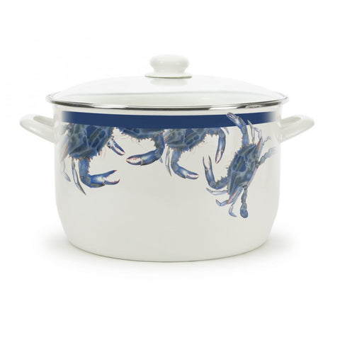 Enamel Stock Pot
