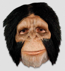 Chimpanzee Face Mask - Corvus: Clothing and Curiosities