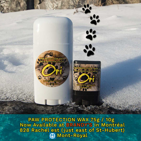 PAW PROTECTION WAX - 100% Natural Ingredients sold at Brandy's 828 Rachel east in Montreal