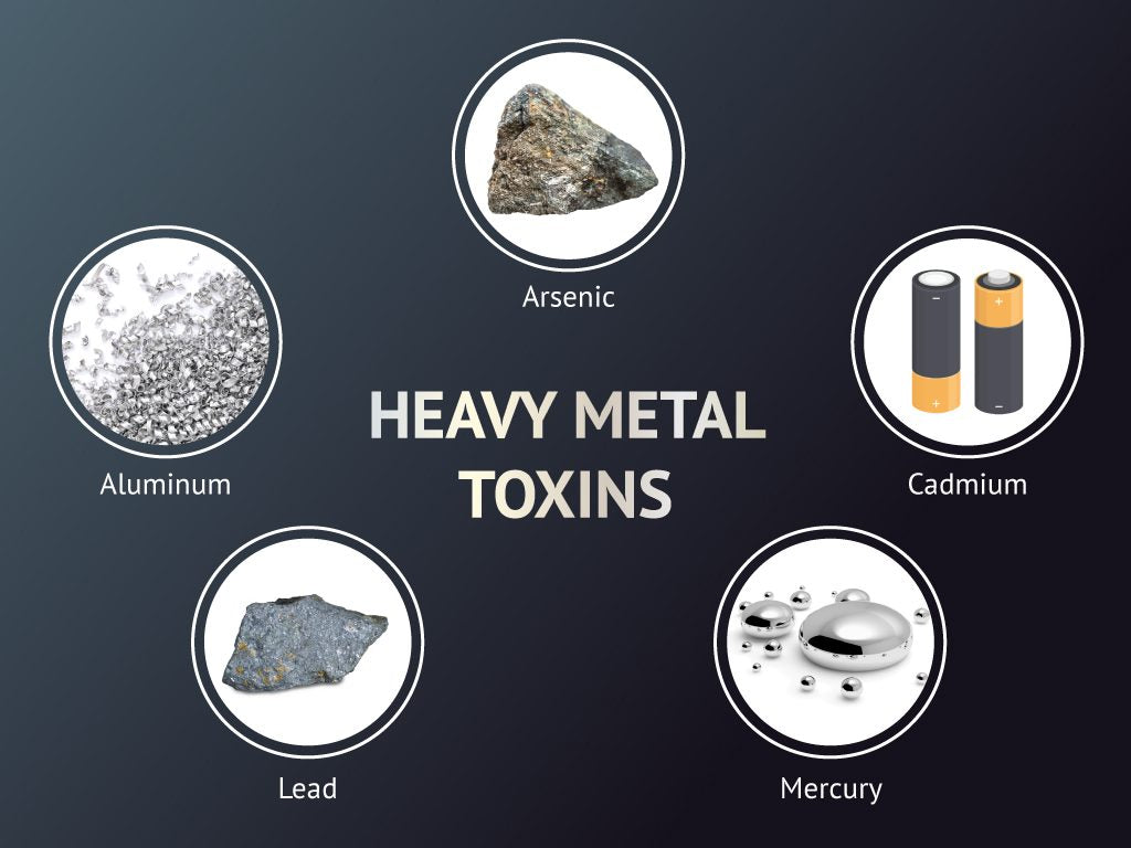 Heavy Metal Detox & Recommended Supplements
