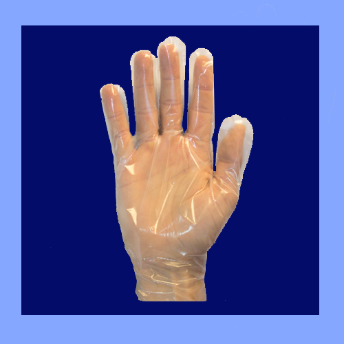 GDCP-L - CLEAR DISPOSABLE GLOVES