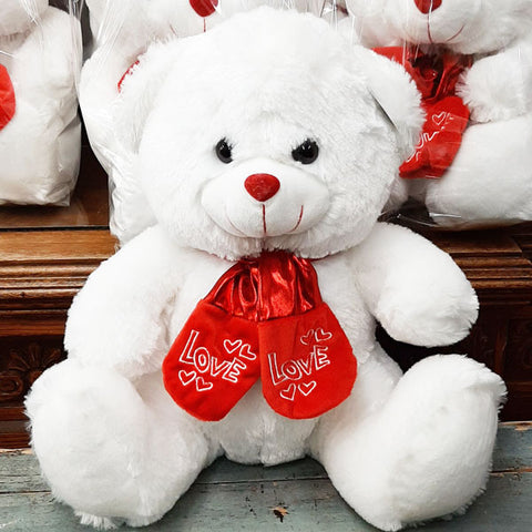 Medium Sized Valentine Bear