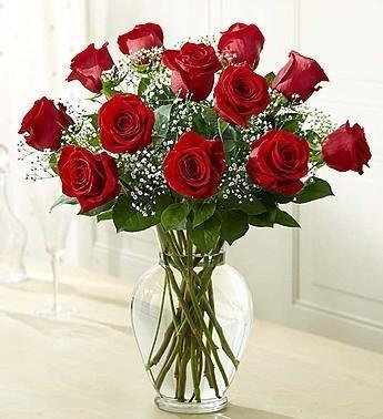 Valentine One Dozen Roses In Vase With Baby's Breath