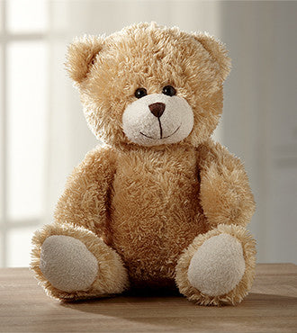 Adorable Stuffed Bear
