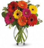 Summer Fun Bouquet (One dozen Gerberas)
