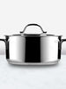 Contempo Stainless Steel Low Casserole Pot