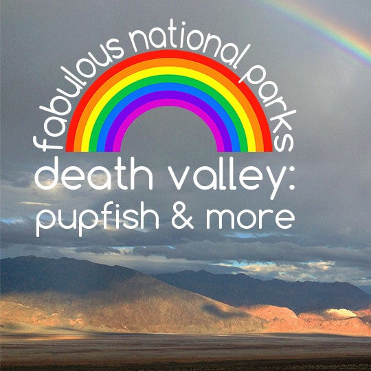 fabulous national parks - death valley