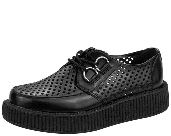 Perforated Creepers