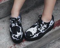 Black & White Cow Print D-Ring Interlace Viva Mondo Creeper