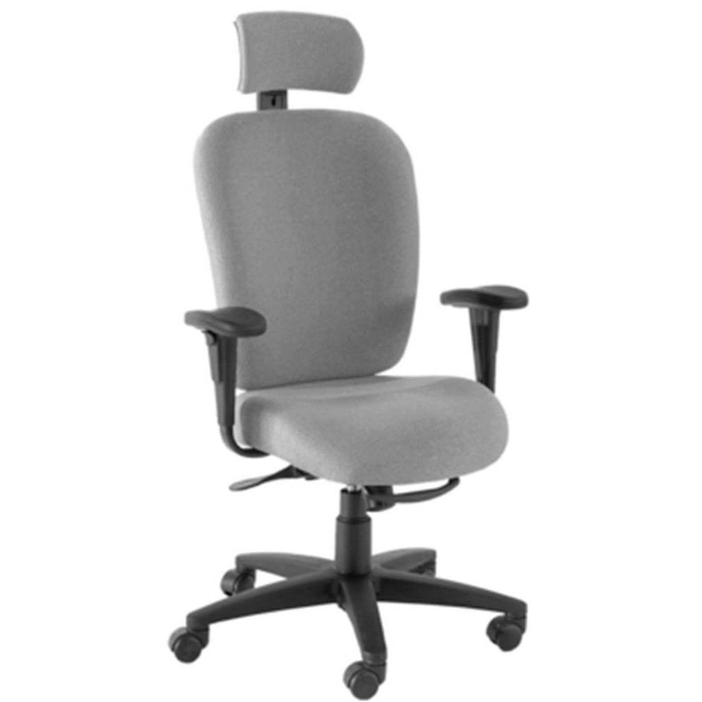 Dany High Back Executive Task Chair with Headrest | Sithealthier.com