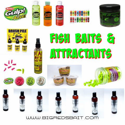 Fish Baits And Attractants
