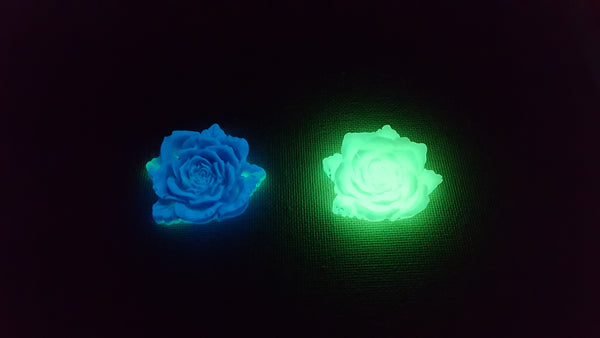 fluorescent blue and green phosphorescent flowers