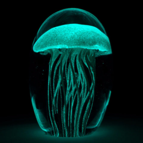 glowing glass jellyfish