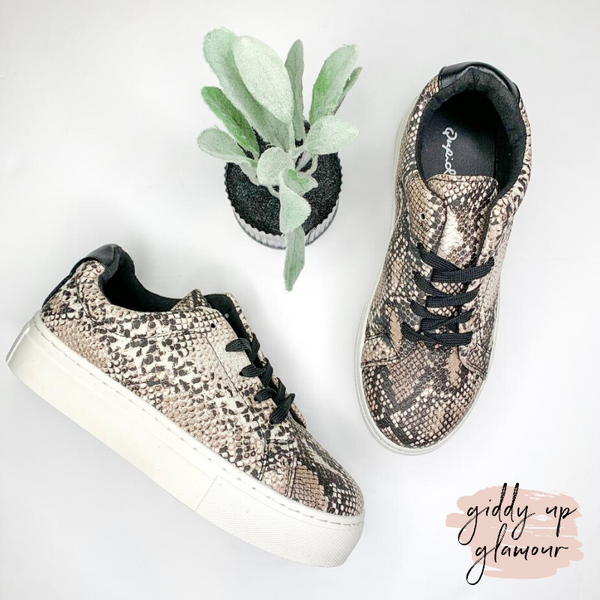 In the Lead Platform Sneaker in Snakeskin