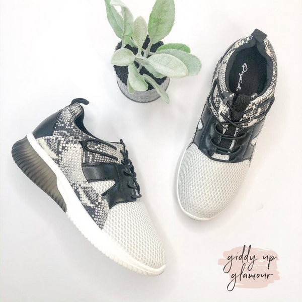 Race You There Lace Up Sneakers in Black Snakeskin