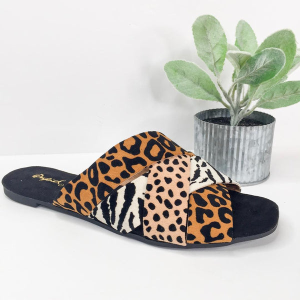 Wild At Heart Slide on Sandals in Leopard
