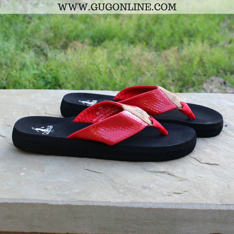 Royal Cushion Flip Flops in Red