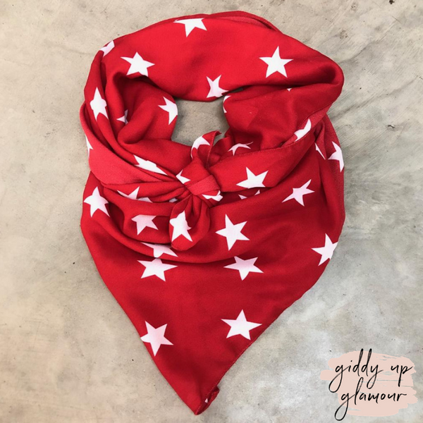Oh My Stars Sheer Wild Rag Scarf in Red