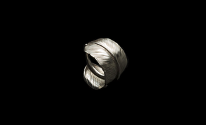 Larry Smith feather Ring
