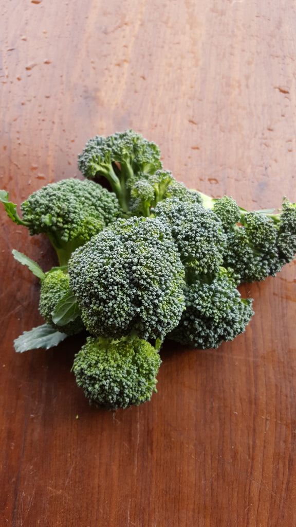 Broccoli, [product-type] - fresh from Growing Healthy Foods