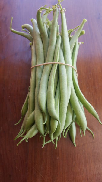 Green beans, [product-type] - fresh from Growing Healthy Foods