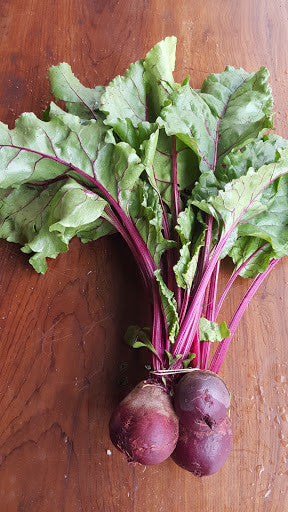 Dark Red Beetroot - Growing Healthy Farms