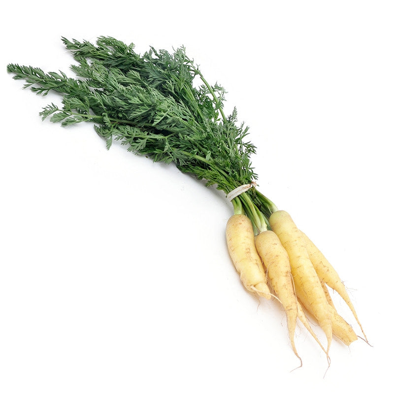 Carrots White, [product-type] - fresh from Growing Healthy Foods