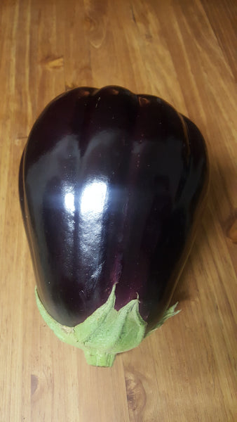 Brinjal each, [product-type] - fresh from Growing Healthy Foods