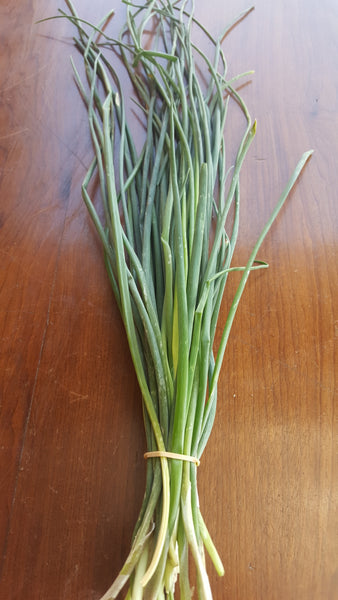 Chives /50g, [product-type] - fresh from Growing Healthy Foods