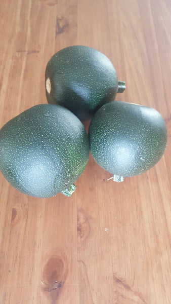 Gem Squash 3's, [product-type] - fresh from Growing Healthy Foods