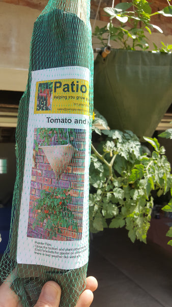Tomato planter, [product-type] - fresh from Growing Healthy Foods