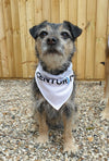 Centurion Running Upcycled Dog Crew Bandana