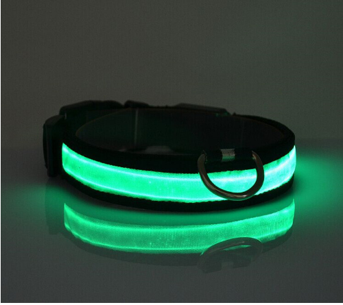 LED Collars - DaisyBooandCo.com