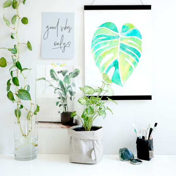 MONSTERA LOVE