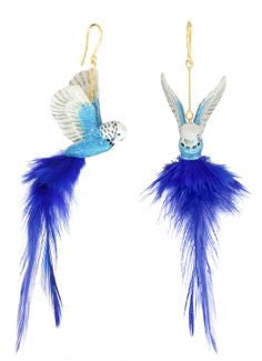 Blue Parrot Feather Earrings