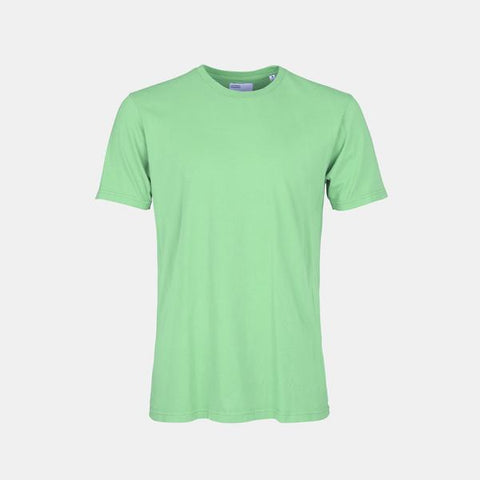 Mens Classic Organic Tee Faded Mint
